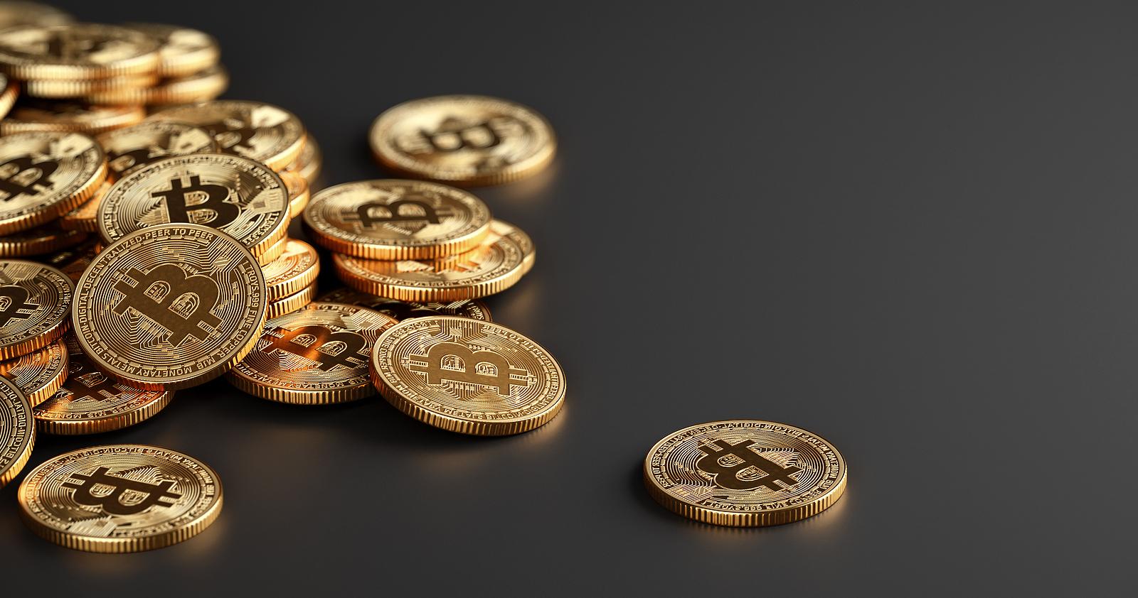 blockchain.com wallets recovery service